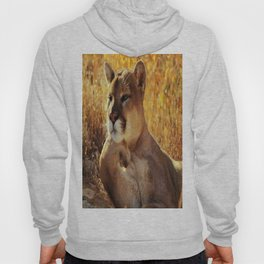 The Golden Thinker 🐾 Cougar 🐾 Hoody