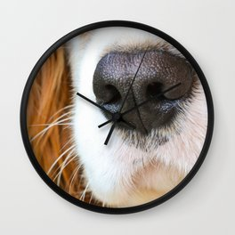 Face of a dog Wall Clock