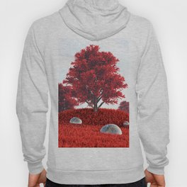 Shelter Song Hoody