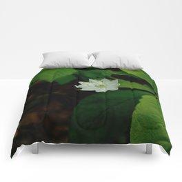 Wild Strawberry Blossom Comforters