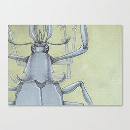 Beetle Blue Canvas Print