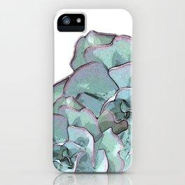 Succulent N.2 iPhone Case