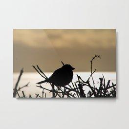 sunset bird silhouette Metal Print