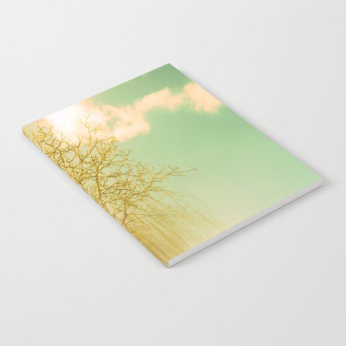 Impermanence Notebook