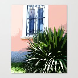 Yucca. Canvas Print