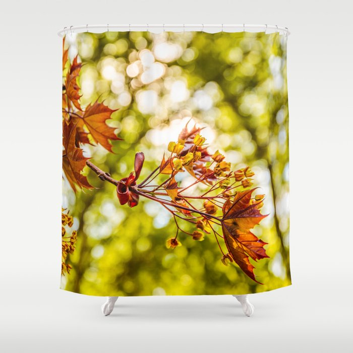 Maple blooms Shower Curtain