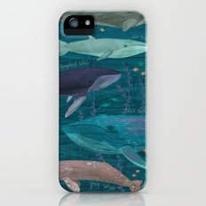 Whales iPhone SE Slim Case