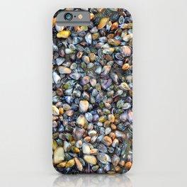 Sea Shells Low tide iPhone Case