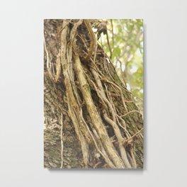 Tarzan Trees Metal Print