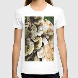 Fungus T-shirt