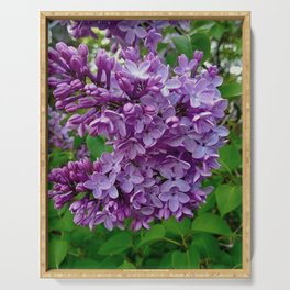 Lilac Blooms Serving Tray