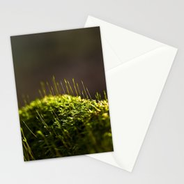 Atop A Post Stationery Cards
