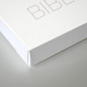 Bibliophant - enormous lover of books Canvas Print