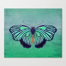 Butterfly in Spring Green Canvas Print