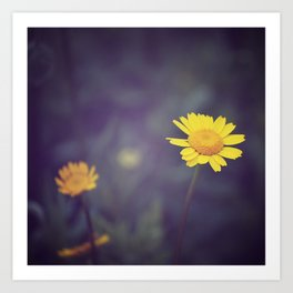 Miss Yellow Daisy Art Print
