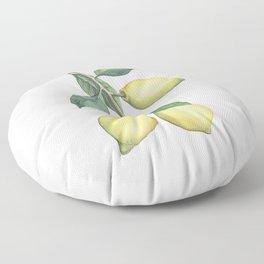 Lemon Dreams Floor Pillow