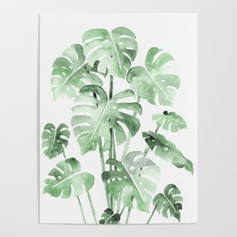 Delicate Monstera Green #society6 Poster