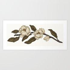Magnolias Branch Art Print