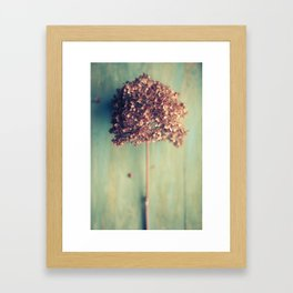 Autumnal Light no.2 Framed Art Print