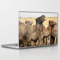 israel Laptop & iPad Skins featuring Israel Camels - Negev Desert by Rachel J