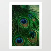 peacock Art Prints featuring Peacock by Olivia Joy StClaire
