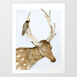 Deer and Bird Art Print