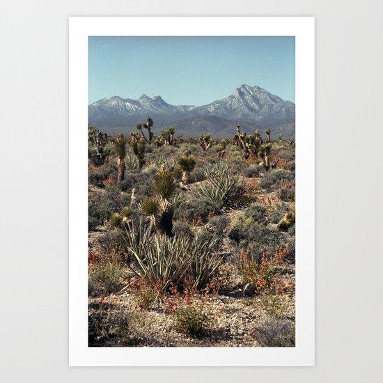 Cold Creek, Nevada Art Print