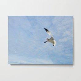 taking flight. Metal Print
