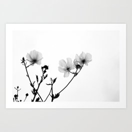 Flowers in Black and White Art Print