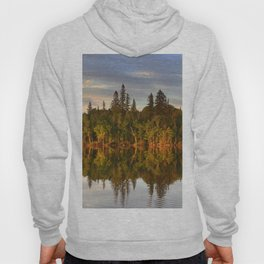 Magic Forest Hoody