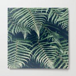 leaf design Metal Print