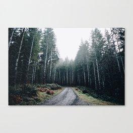 Drive VII Canvas Print