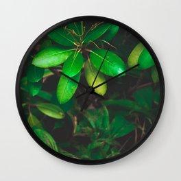 Nature wonder Wall Clock