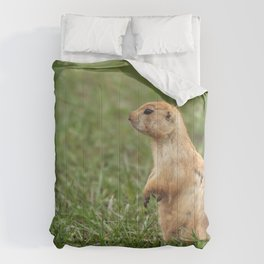 Prairie Dog on the Lookout Comforters