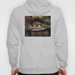 Watcher Of The Woods Hoody
