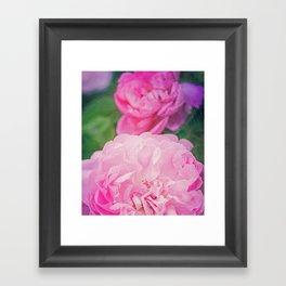The World Smelled of Roses Framed Art Print