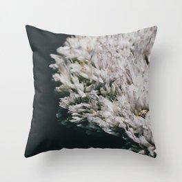 Celestine III Throw Pillow