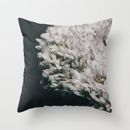 Celestine III Throw Pillow