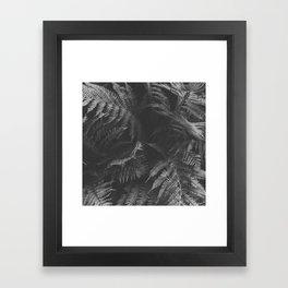 Colorless Fern Framed Art Print