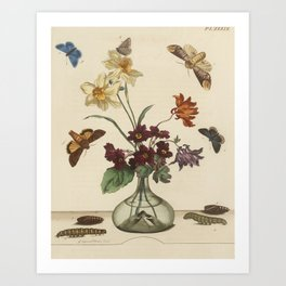 Glass Vase With Flowers and Butterflies Art Print