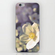 Norwegian Whites iPhone & iPod Skin