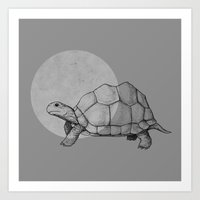 tortoise Art Prints featuring Tortoise by Plonker