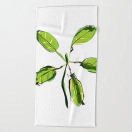 New Growth Beach Towel