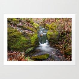 Ozark Mountain Stream - Northwest Arkansas Art Print