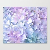 pastel Canvas Prints featuring Soft Pastel Hydrangea by Judy Palkimas