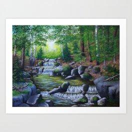Adirondack Brook Art Print