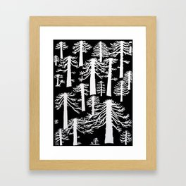 Araucarias Blancas Framed Art Print