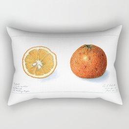 Citrange Rectangular Pillow