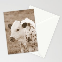 Spotted Long Horn Calf Photograph Stationery Cards