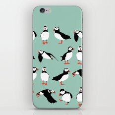 just puffins iPhone & iPod Skin